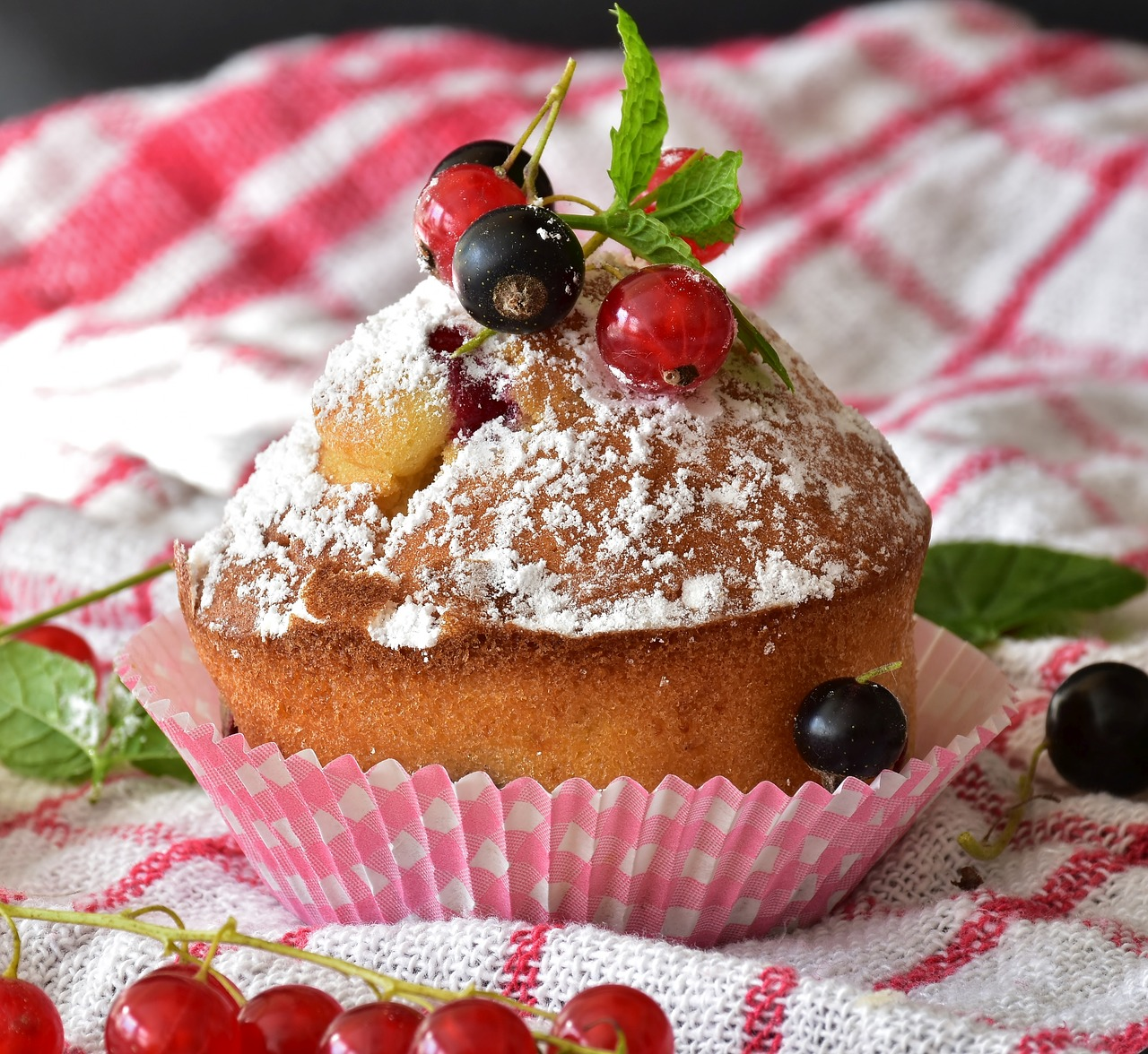 muffin-3510308_1280